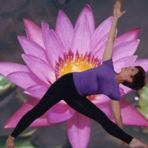 Lotus anne
